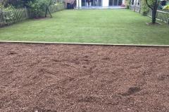 lawns_new-10
